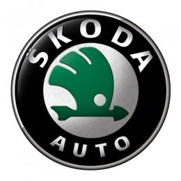 Накладки на пороги для а/м Skoda